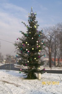 2012_12_17
