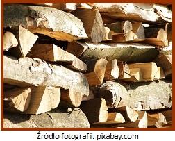 mokre drewno